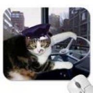 ace wheel cat